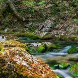 Economia circolare e uso efficiente risorse naturali