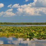 riserve idriche acqua mondo